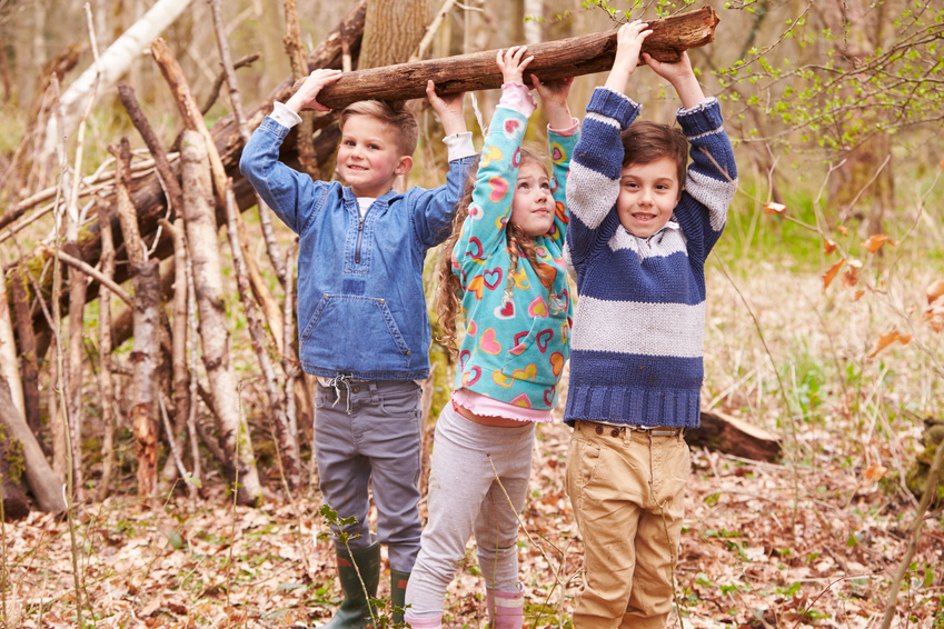 Children Building Camp In Forest Together